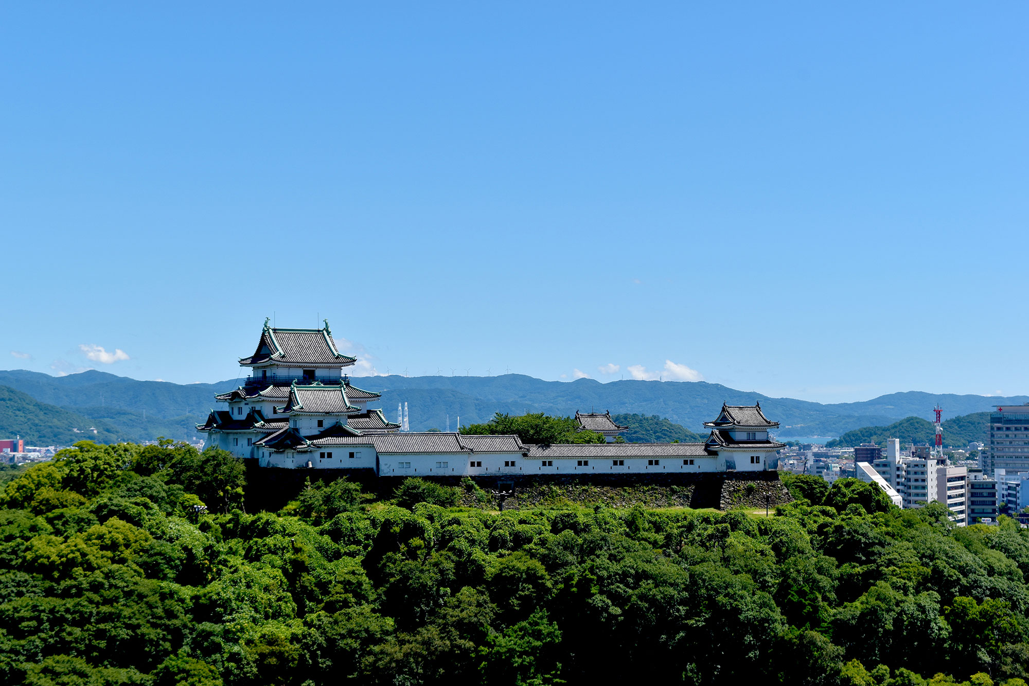 You can look at the whole Wakayama Castleの写真