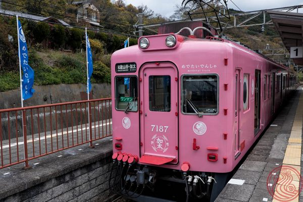 Randomly, I got to ride this little train. It's the めでたいでんしゃ, a train modeled after a sea bream fish.
