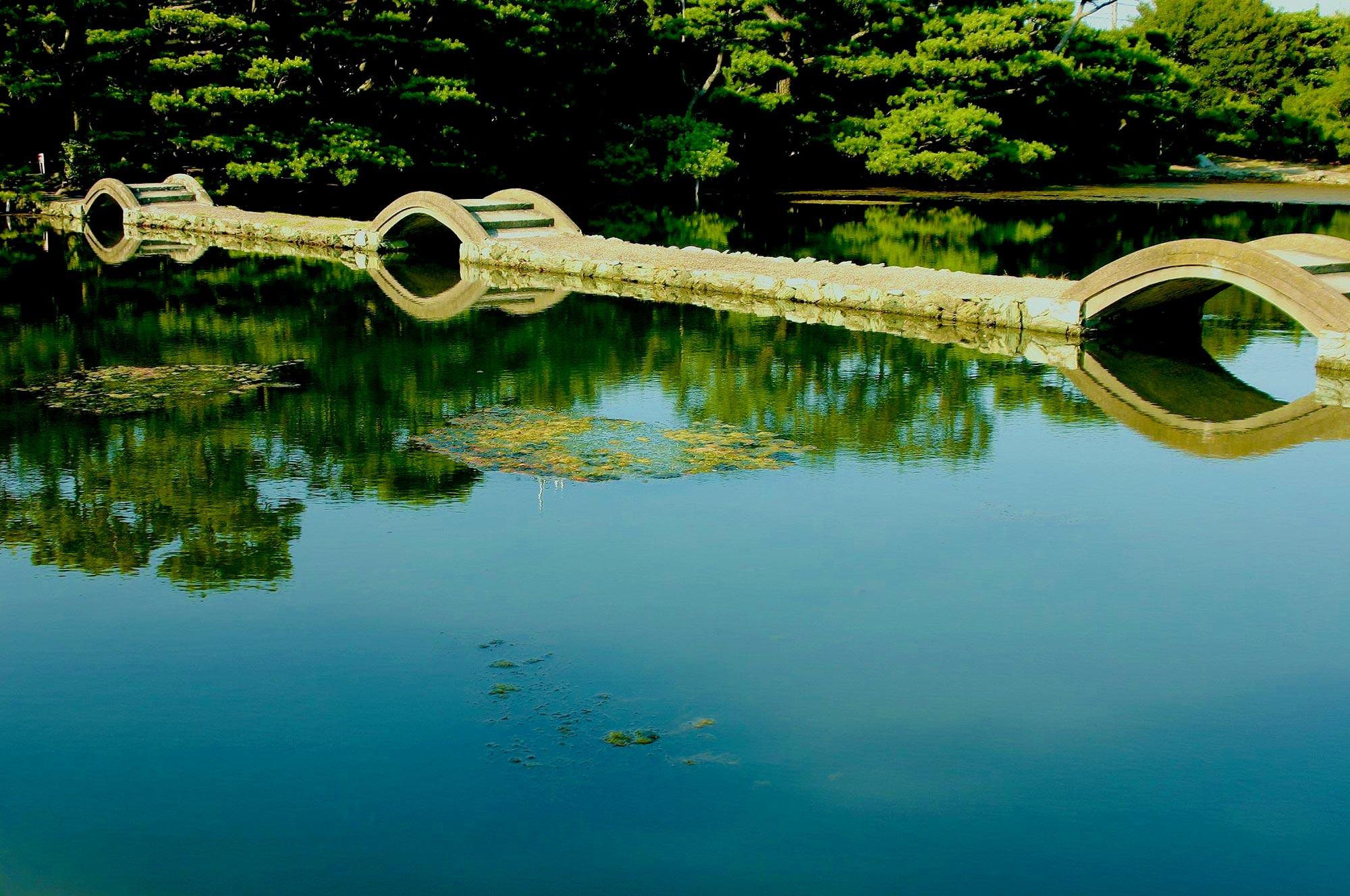 Reflectionの写真