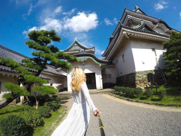 wakayama-castle-large-mylifesamovie-com