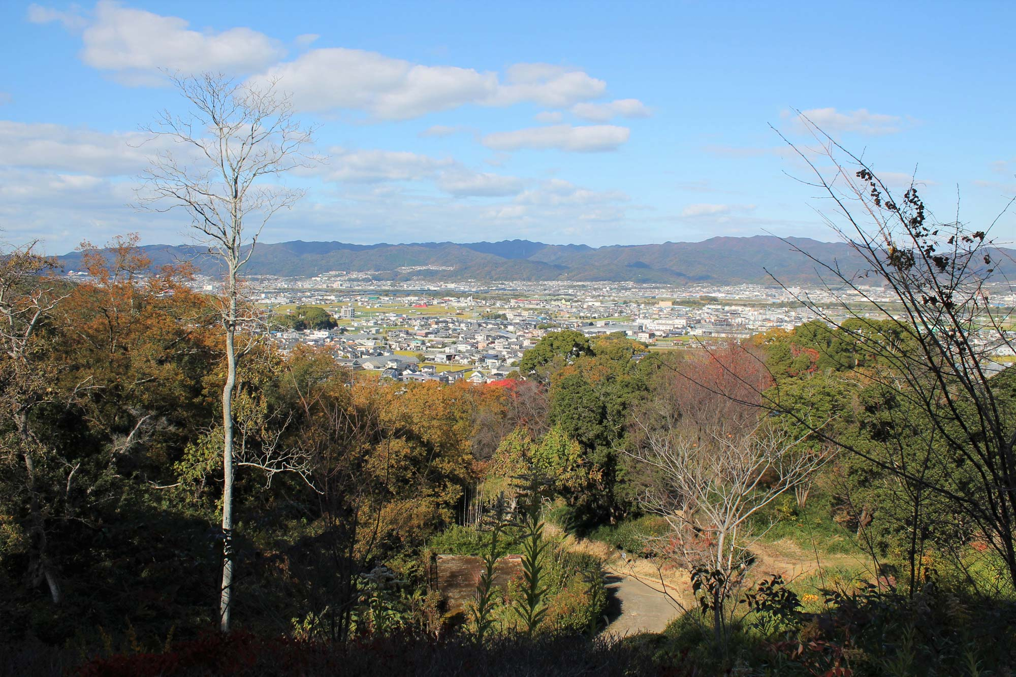 View from the mountainの写真